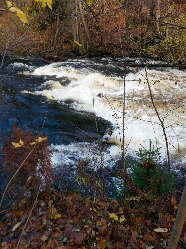 Река для пакрафтинга